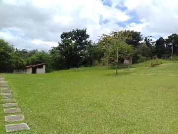 Comprar Rural / Chacara em Guareí apenas R$ 400.000,00 - Foto 17