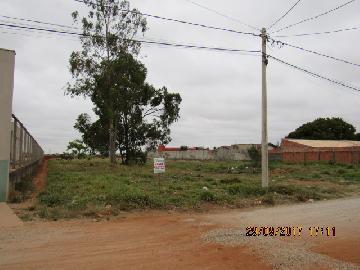 Alugar Terreno / Terreno em Itapetininga apenas R$ 1.200,00 - Foto 2