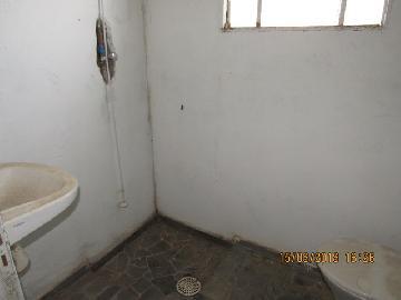 Comprar Comercial / Barracão em Itapetininga apenas R$ 320.000,00 - Foto 5