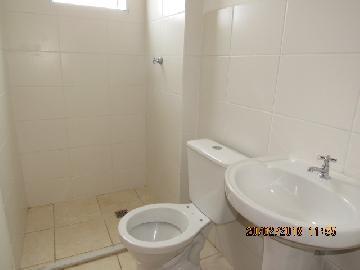 Alugar Apartamento / Padrão em Itapetininga apenas R$ 550,00 - Foto 10