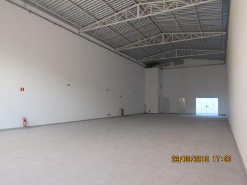 Itapetininga Centro Salao Locacao R$ 5.800,00  Area do terreno 350.00m2