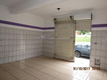Comprar Casa / Padrão em Itapetininga apenas R$ 800.000,00 - Foto 3