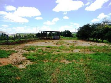 Comprar Rural / Sitio em Itapetininga apenas R$ 1.740.000,00 - Foto 8