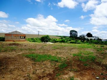 Comprar Rural / Sitio em Itapetininga apenas R$ 1.740.000,00 - Foto 11