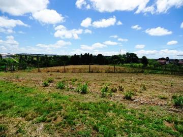Comprar Rural / Sitio em Itapetininga apenas R$ 1.740.000,00 - Foto 12