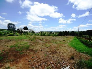 Comprar Rural / Sitio em Itapetininga apenas R$ 1.740.000,00 - Foto 10