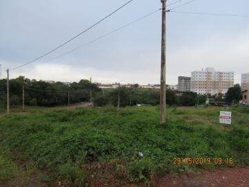 Comprar Terreno / Terreno em Itapetininga apenas R$ 140.000,00 - Foto 1