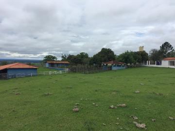 Comprar Rural / Sitio em Itapetininga apenas R$ 1.500.000,00 - Foto 19