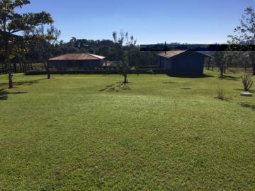 Comprar Rural / Sitio em Itapetininga apenas R$ 1.500.000,00 - Foto 20