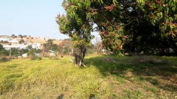 Comprar Terreno / Terreno em Itapetininga apenas R$ 2.300.000,00 - Foto 5