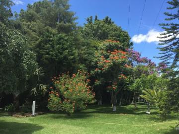 Comprar Rural / Rancho em Campina do Monte Alegre - Foto 2