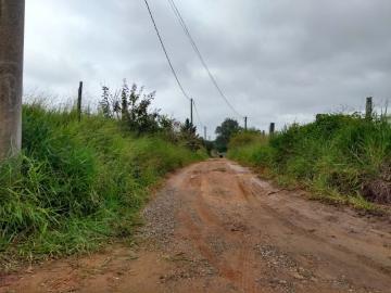 Comprar Terreno / Lote em Itapetininga apenas R$ 600.000,00 - Foto 5
