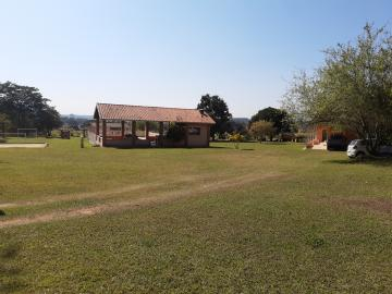 Comprar Rural / Sitio em Sarapuí apenas R$ 430.000,00 - Foto 3
