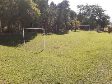 Comprar Rural / Sitio em Sarapuí apenas R$ 430.000,00 - Foto 10