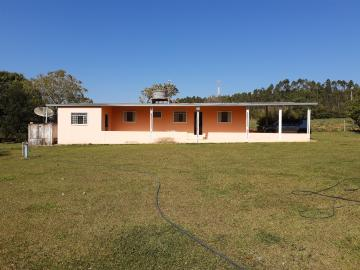 Comprar Rural / Sitio em Sarapuí apenas R$ 430.000,00 - Foto 13