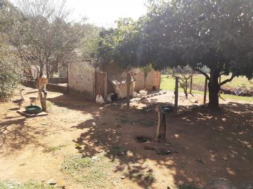 Comprar Rural / Sitio em Sarapuí apenas R$ 430.000,00 - Foto 14