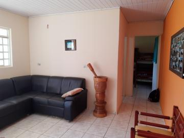 Comprar Rural / Sitio em Sarapuí apenas R$ 430.000,00 - Foto 19
